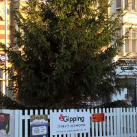 Jaywick Christmas Tree
